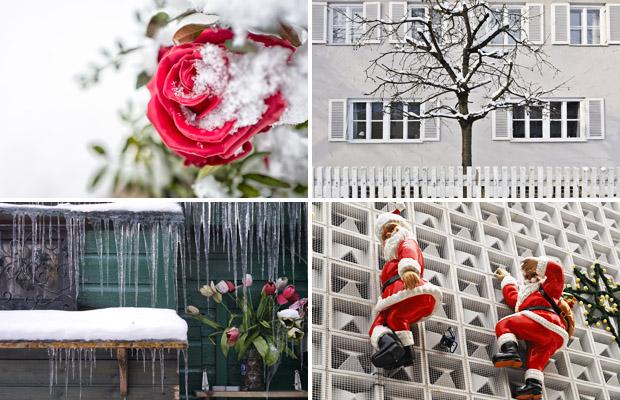 Weihnachtliches, Winterliches und Weißes bei SZ Photo Creative