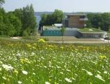 Buchheim Museum, 2001
