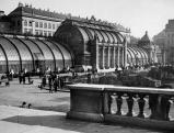 Das Palmenhaus im Wiener Burggarten, ein Glaspalast, beherbergt u.a. ein Schmetterlinghaus., 01.01.1932-31.12.1932