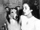Elizabeth Taylor in Heimweh, 1943