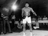 Muhammad Ali beim Training vor seinem Kampf gegen JimmyYoung am 20.04.1976