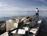 Ein Korallenschneider von Serangan zieht die geschnittenen Korallen nach Hause, Bali 2009