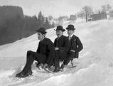 Drei Herren fahren Schlitten, 1912