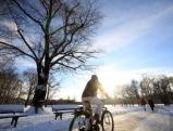 Fahrradfahrer im Englischen Garten