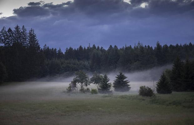 """Idyllische Landschaft in der Abenddämmerung. Nebelschwaden ziehen über das Feld. Einsamer Jäger Hochsitz. Aus dem Projekt """"Weidmannsheil"""". 29.06.2020, Andechs, Bayern, Deutschland, 2020."""